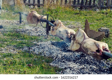 Lamb being roasted whole on a spit over open fire on a spit. Selective focus
