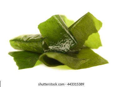 Laminaria (Kelp) Seaweed Isolated on White Background