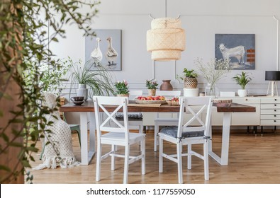 Lamp above wooden table in rustic dining room interior with white chairs and posters. Real photo