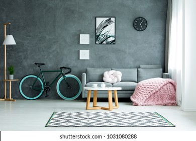 Lamp and bicycle near grey couch with pink blanket in spacious living room interior with poster on dark wall