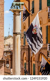 the lamp of the contrades in Siena before the Palio. Toscany, Italy