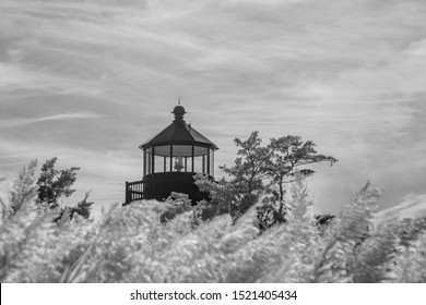 Lamp of East Point Lighthouse  above tall grasses along Maurice River in New Jersey in sepia.