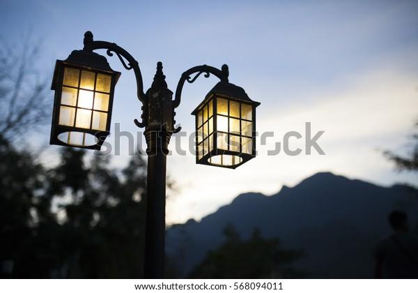 Lamp in night garden