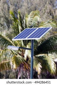 Lamp with the solar battery in tropics.