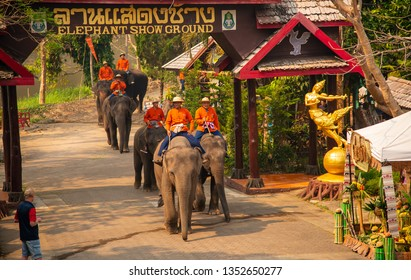 Lampang, elephant show,Thailand - Group of elephant eating fruit in national Thai elephant day at The Thai Elephant Conservation Center Lampang, Hang Chat, Lampang, Thailand on March 13, 2019