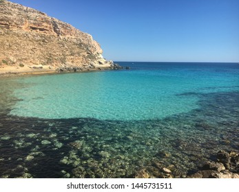 Lampedusa Island, Sicily, Italy. - Cala Galera with bloomed thyme and cardoon. -Paradise island with white sand coves, clear water and colored Mediterranean scrub.