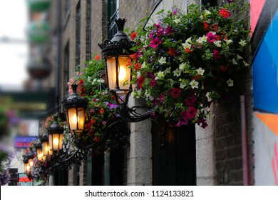 Lamps and Flower Baskets outside a pub, Temple Bar, Dublin, Ireland.