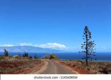 Lanai Road Shore