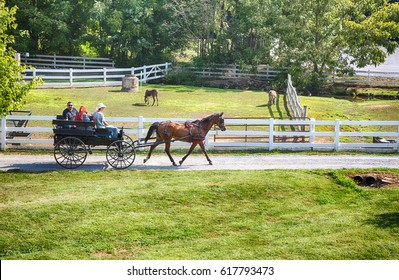 Lancaster, Pennsylvania - September 10, 2016 - Amish men give tourists a ride in a traditional buggy on a historic farm in Amish Country Pennsylvania.