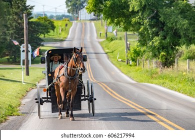 LANCASTER, USA - JUNE 25 2016 - Amish driving a chariot in Lancaster. Amish are known for simple living with touch of nature contacy, and reluctance to adopt conveniences of modern technology