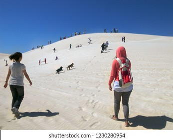 Lancelin Dunes sandboarding, climbing up the sand dunes, Perth, Western Australia
