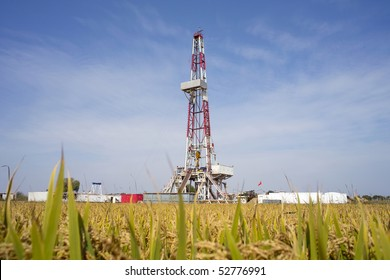 Land drilling rig surround by paddy field in China