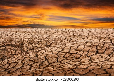 land with dry cracked ground