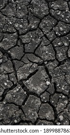 Land with a dry, rough, and cracked texture. - Shutterstock ID 1899887863