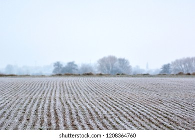 Land field covered in frost in the onset of early winter