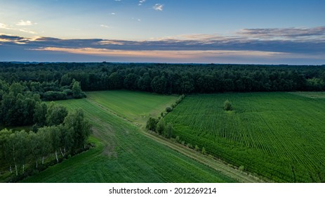 Land or landscape of green field in aerial view. Include agriculture farm, house building, village. That real estate or property. Plot of land for housing subdivision, development, sale or investment