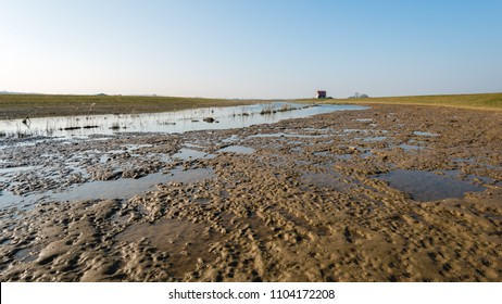 Land in the Noordwaard polder of the Brabantse Biesbosch will become dry again after the flooding due to the high water in the adjacent river.  Panoramic image taken on a day at the end of the winter.