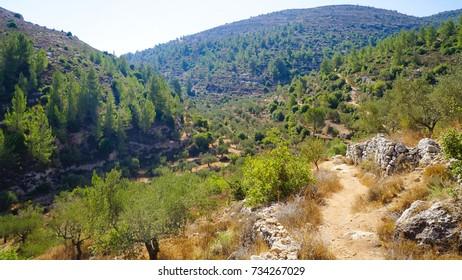 Land of Olives and Vines Cultural Landscape of Southern Jerusalem, Battir UNESCO Site