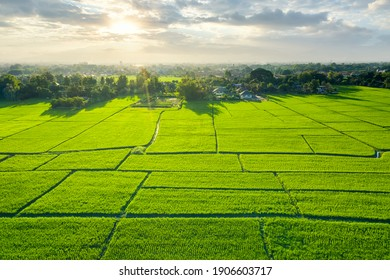 Land plot in aerial view. Include landscape, green field, crop, agricultural plant. Tract of land for housing subdivision, residential, development, owned, sale, rent, buy or investment in Chiang Mai. - Shutterstock ID 1906603717