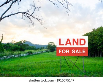 Land for sale sign on empty land, green meadow near the tree and surrounded with white wooden fence on beautiful sky background. Red and white letters on sign board. Real estate concept.