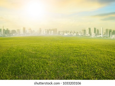land scape wide green grass field and modern building of urban skyscraper use as cityscape background