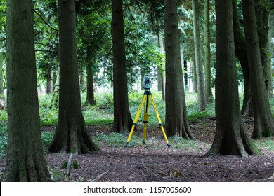 A land surveyors theodolite amongst trees