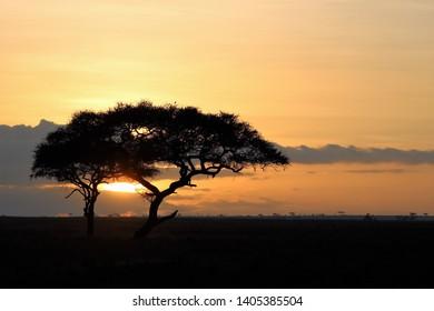 landcsape views in Tanzania, Africa