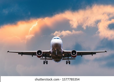 Landing of the passenger plane at evening time.