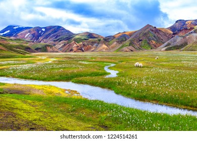 Landmannalaugar is a part of Fjallabak Nature Reserve in the Highlands of Iceland.