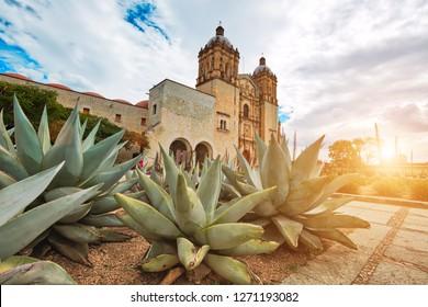 Wahrzeichen Santo Domingo Kathedrale im historischen Zentrum von Oaxaca