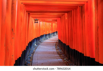 Landmark Torii gates of Fushimi Inari Shrine in Kyoto, Japan
