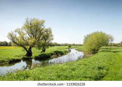 landsacape image of green fields in houghton in Cambridgeshire england