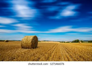 landscape afrer harvest