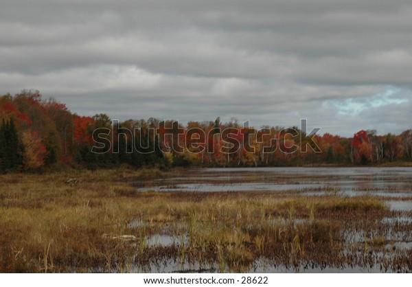 Landscape Ahmic Harbour, Ontario Canada.  October 2004