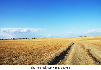 landscape of alentejo plain, south of portugal