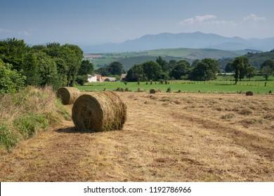 Landscape along the Camino de Santiago trail between Salas and Tineo, Asturias, Spain