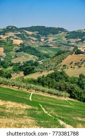 Landscape along the road from Teramo to Penne (Abruzzi, Italy) at summer