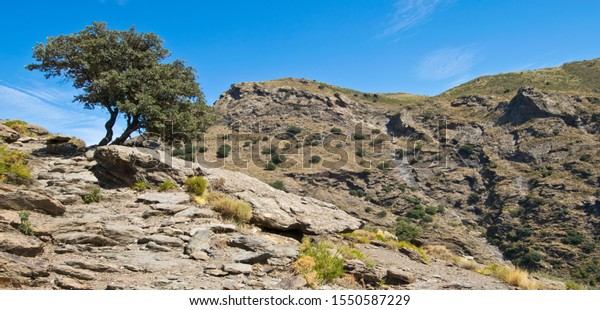 Landscape in Alpujarra in Spain.