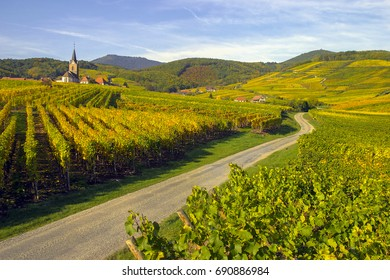 Landscape of the Alsace wine route in autumn