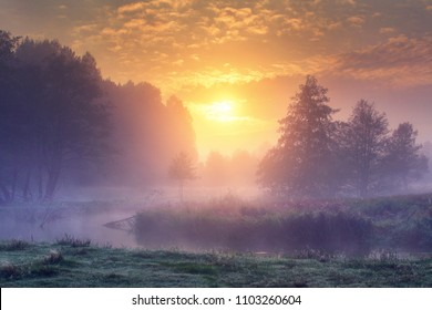 Landscape of amazing summer nature in early foggy morning on sunrise. Trees on river bank in mist on warm sunlight background. Perfect scene of Wild nature at dawn. Colorful sky over forest and river