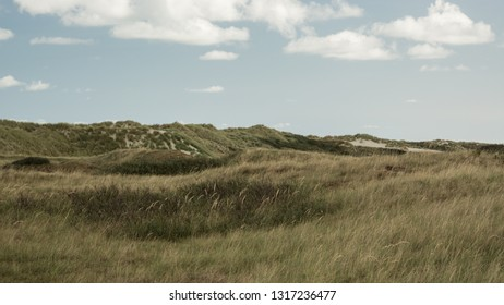 Landscape, Ameland wadden island Holland