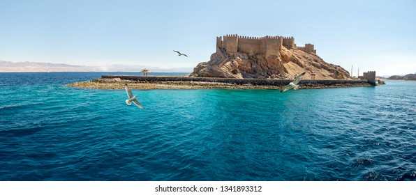 Landscape with ancient Fortress of Saladin on the Pharaoh Island in the Gulf of Aqaba and flying seagulls over the Red Sea. Old Castle of Sultan Salah El Din in Taba, travel on Sinai Peninsula.