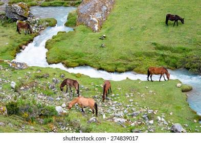 landscape in Andes.  Salkantay Trekking, Peru.