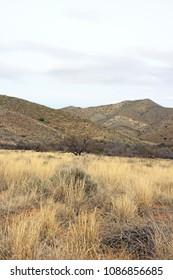 Landscape of Arizona, one day of overcast weather. (USA)