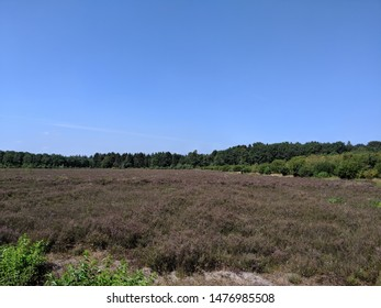 Landscape around Eesveen in Overijssel, The Netherlands
