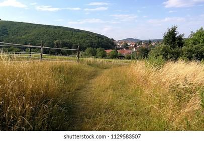 Landscape  around the village