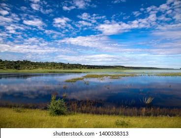 Landscape art the Zambezi Region in northern Namibia during ummer