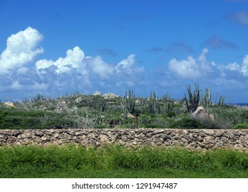 Landscape in Aruba with cloudy sky