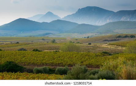 landscape in the Aude region in France