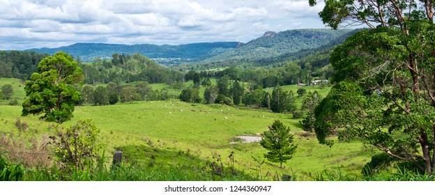 Landscape in Australian hinterland in the summer.